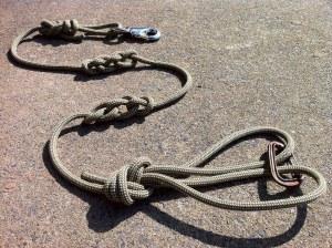 Hilbert Standard Lead